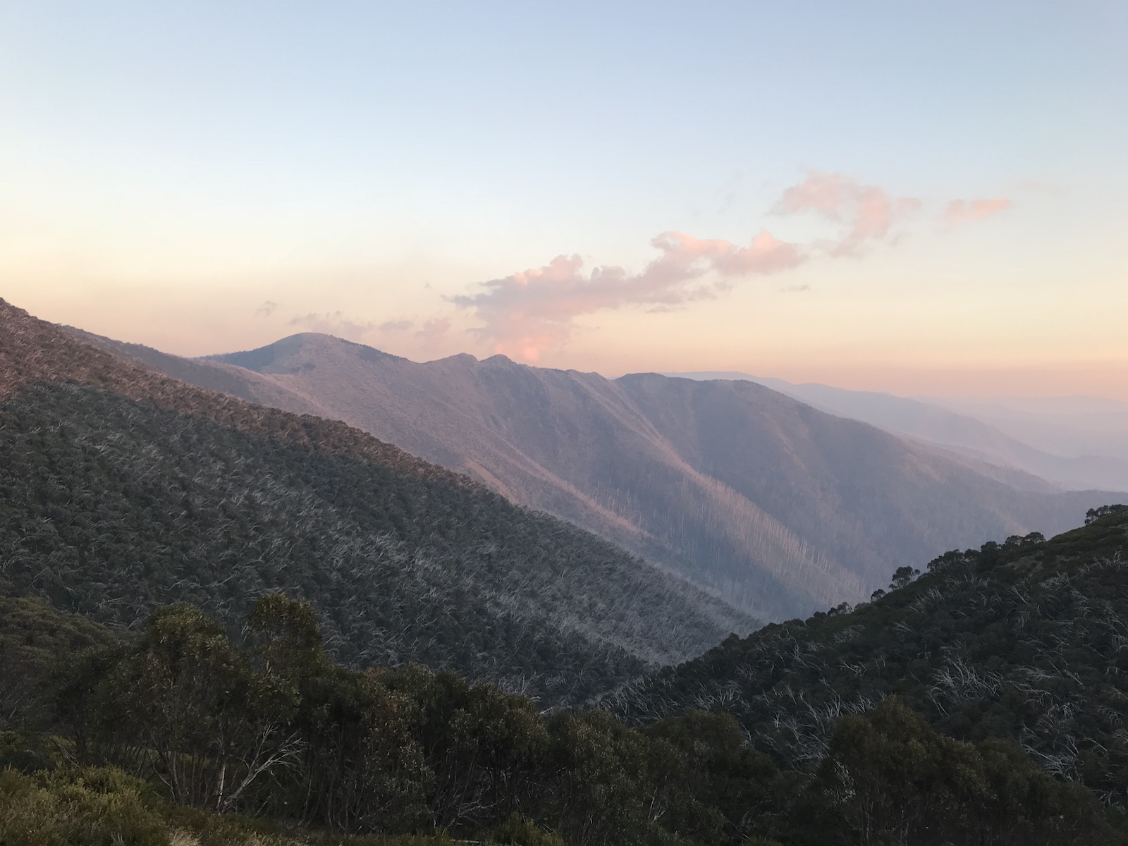 Mount Feathertop - Summer