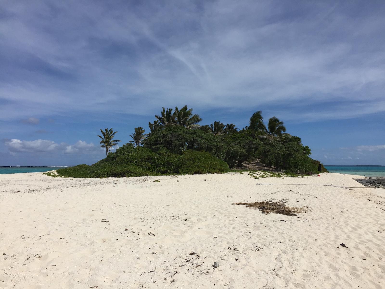 Survivor Island